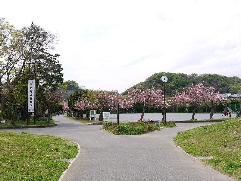 逗子市 池子 第一運動公園