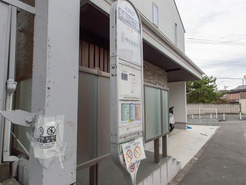 多摩川第二緑道 お住まいの近くでみどりを感じる生活始めませんか。