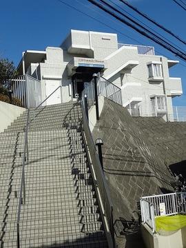 緑豊かな高台に建つ低層3階建マンションです