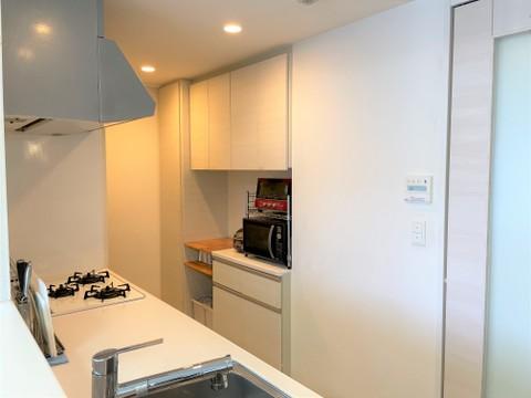キッチン背面には、オプション装備の収納があります。