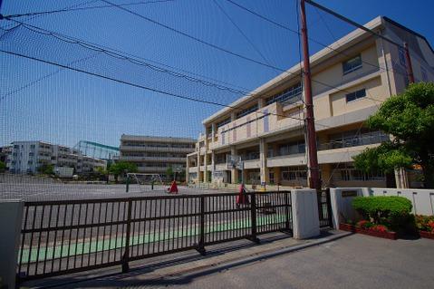 横浜市立神大寺小学校 距離800m