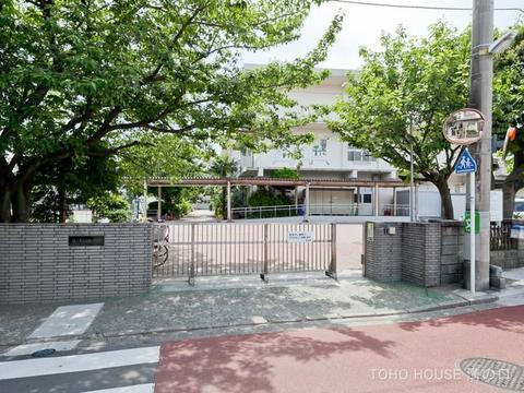 横浜市立白幡小学校 距離700m