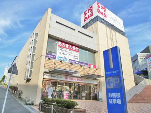 東急ストア 藤が丘駅前店 距離900m