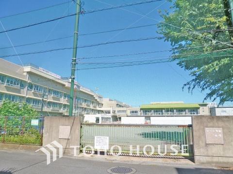 川崎市立井田小学校 距離600m