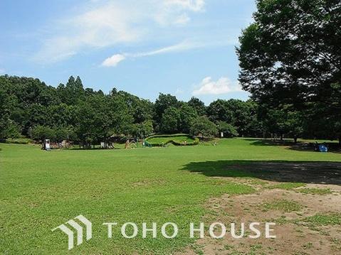 王禅寺ふるさと公園 距離800m