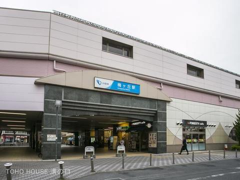 小田急電鉄小田原線「梅ヶ丘」駅 距離800m