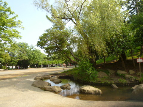 梶ヶ谷第一公園 距離260m