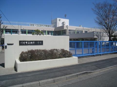 川崎市立稗原小学校 距離550m
