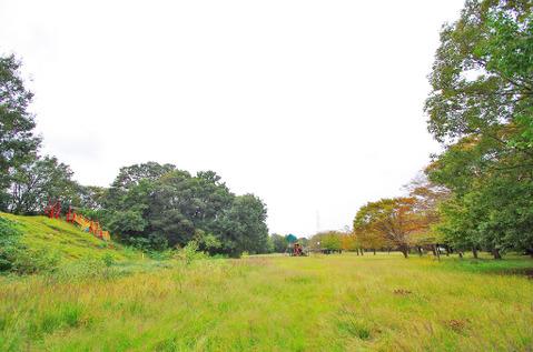 菅生緑地 距離800m