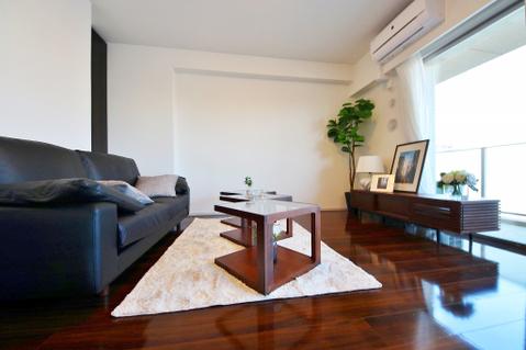 落着いた雰囲気の家具付きマンションです