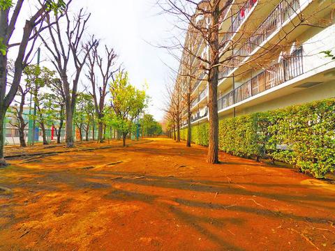 マンション前の緑道