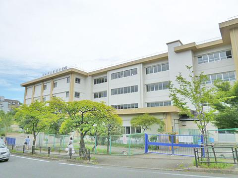 川崎市立鷺沼小学校 距離800m