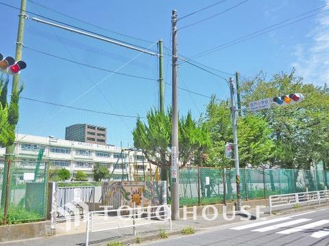 川崎市立坂戸小学校 距離750m