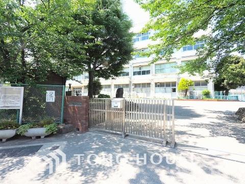 横浜市立樽町中学校 距離800m
