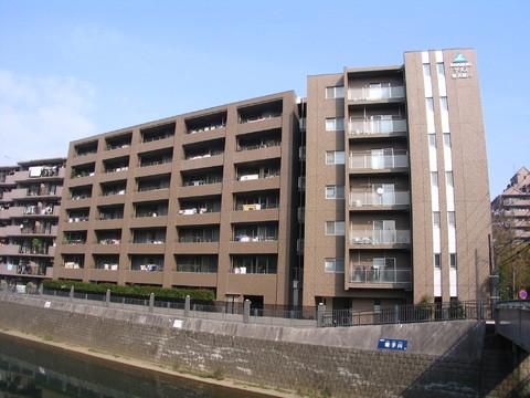サーパス横浜星川