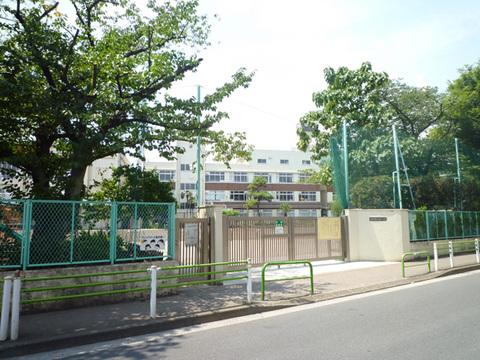 入新井第一小学校約350m