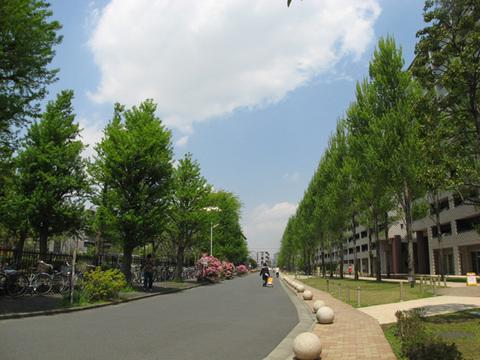 建物前面風景