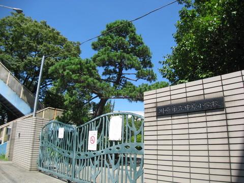 中原小学校(約320メートル)
