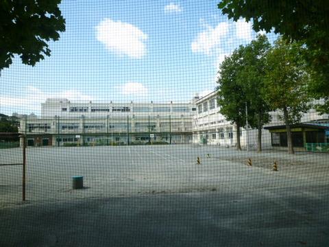 帷子小学校 約800m