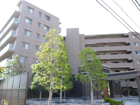デイパーク横濱綱島
