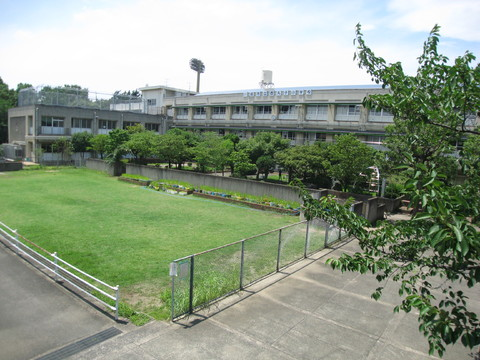 西丸子小学校 徒歩10分(約800m)