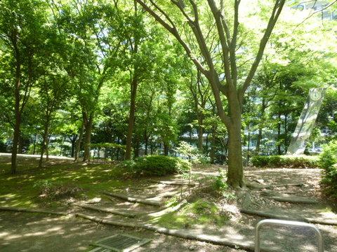 緑地スペース