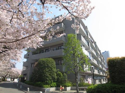 ハウス武蔵小杉