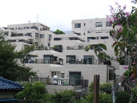 コスモ三ッ池公園