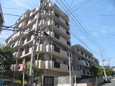 コスモ横浜白根町