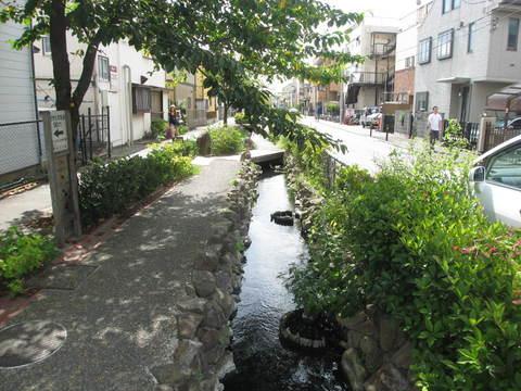 江川せせらぎ遊歩道 徒歩2分(約110m)