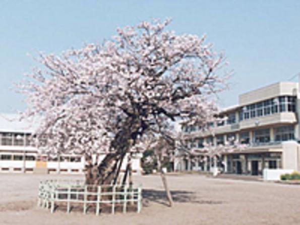 前渡小学校
